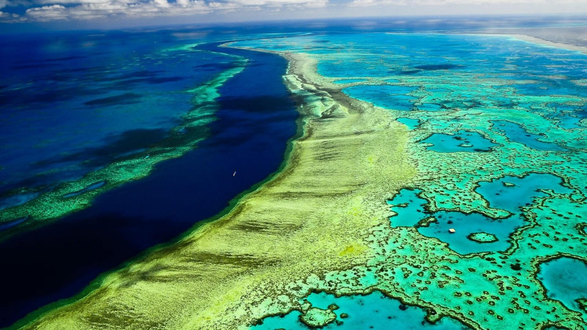 Veliki koralni greben; Foto: PRETEND Magazine